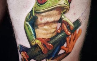 Color Realism Frog Tattoo by Clayton
