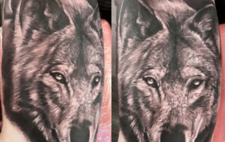Realism Wolf Portrait Tattoo by Mike